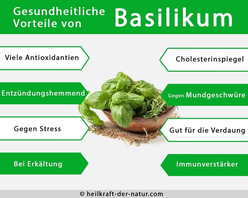 Uebersicht der gesundheitlichen Vorteile von Basilikum