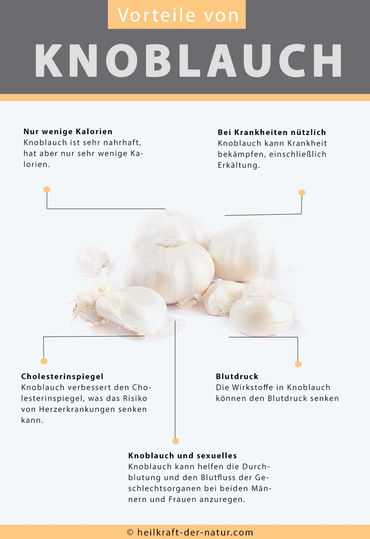 Übersicht der Vorteile von Knoblauch