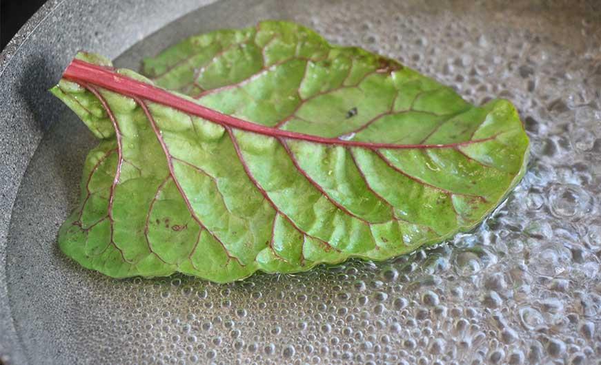 Mangoldblatt in kochendem Wasser