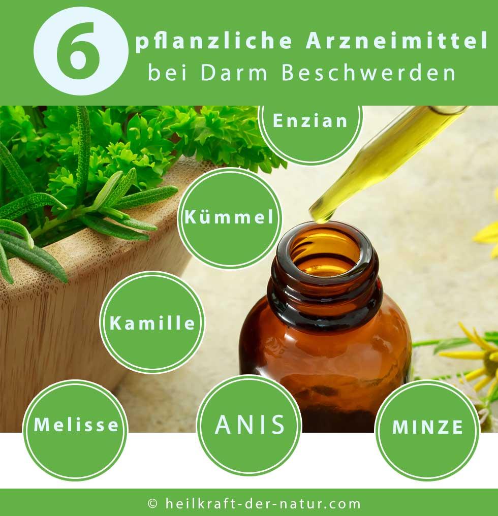 Darm Beschwerden - pflanzliche Arzneimittel