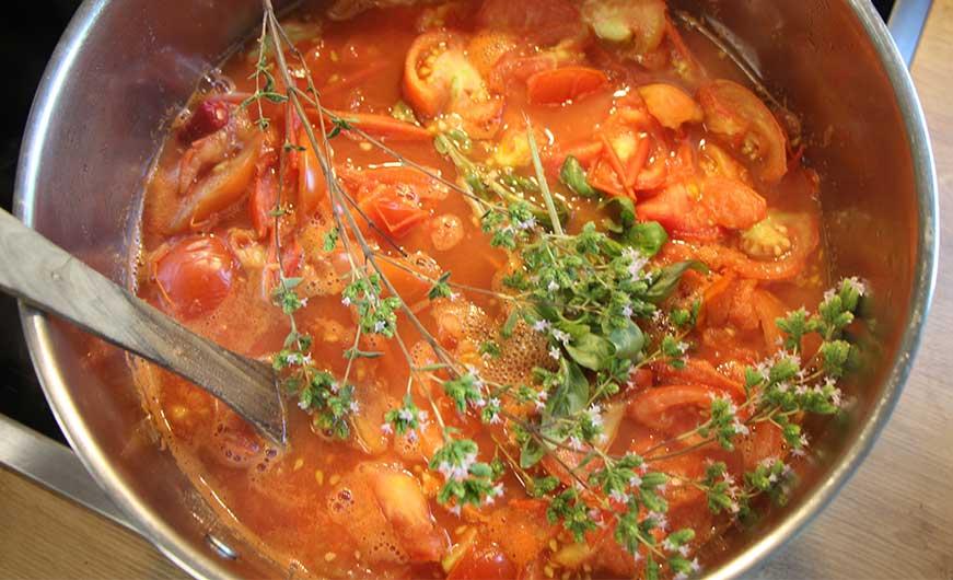 topf tomaten mit frischen kraeutern