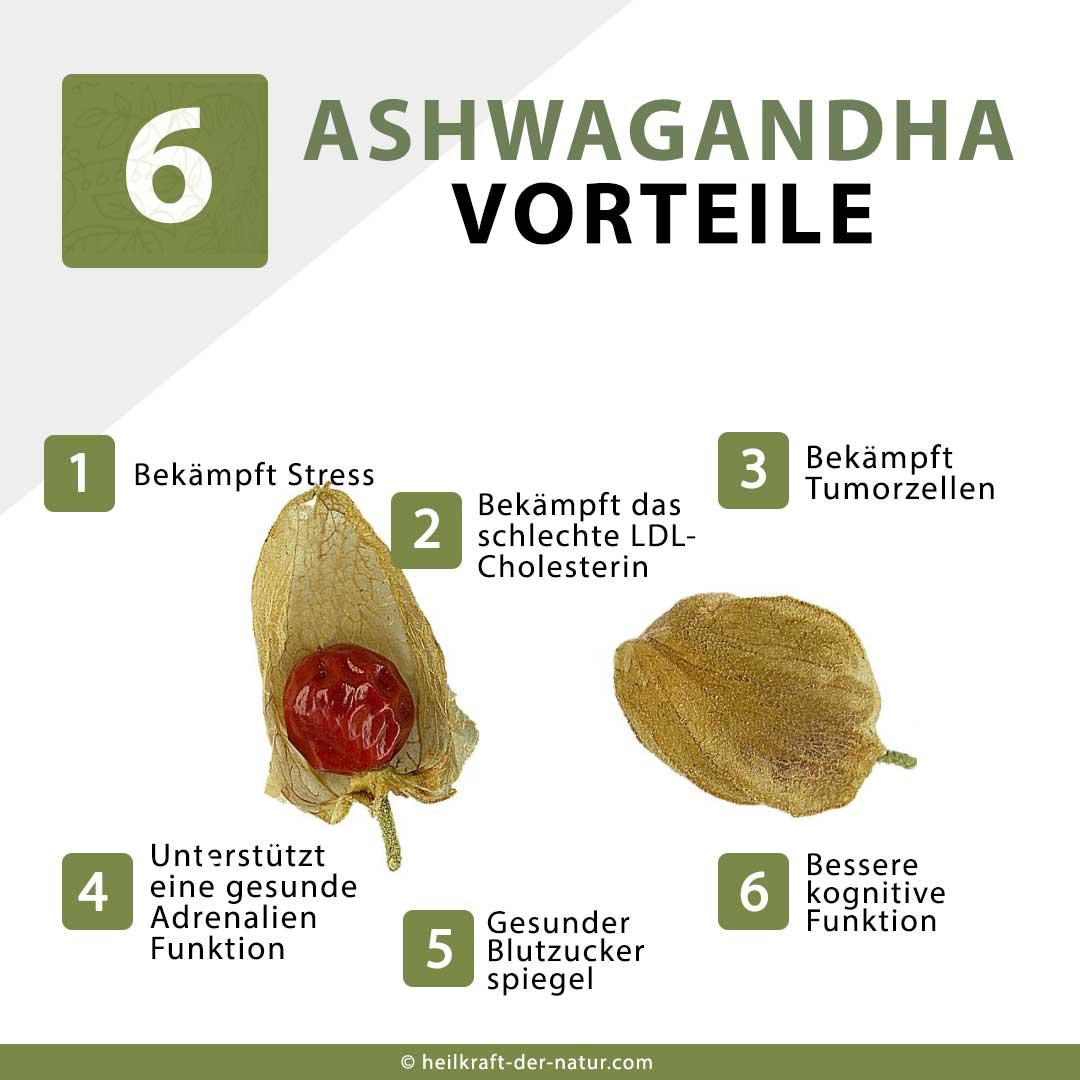 6 Ashwagandha Vorteile