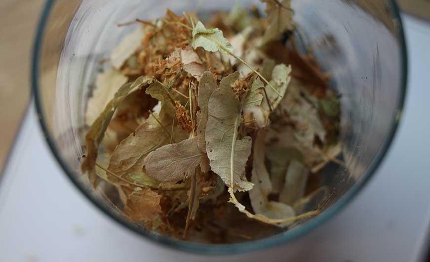 getrocknete Lindenblüten für tee
